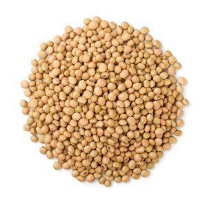 Soybean Chicken Feed