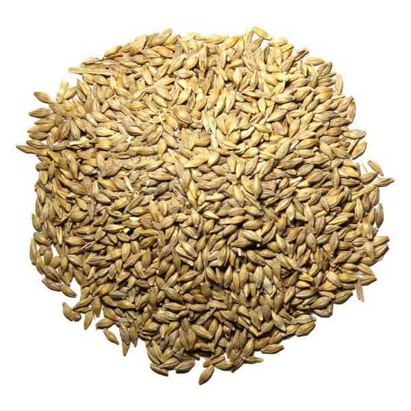 Barley Chicken Feed