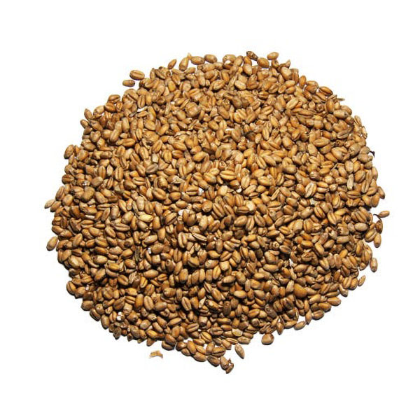 Whole Wheat Chicken Feed