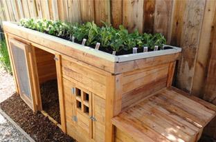 Herb Garden Coop Marin County, CA